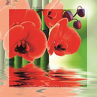 Картина на стекле с МДФ подложкой Красные орхидеи 50*50 см