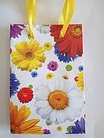 Пакет подарочный бумажный мини 8х13х4 (20-035)