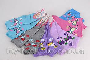 Детские носки на девочку  ( WC230/720) | 720 пар, фото 3