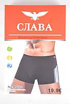 "Боксеры мужские ""Слава"" бамбук ( PTM8203/384 ) | 384 шт., фото 2"