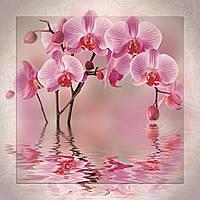 Картина на стекле с МДФ подложкой Орхидеи 60*60 см