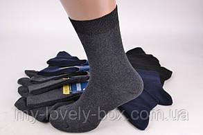 Мужские носки ЖИТОМИР р. 41-45 (PT002/6/480) | 480 пар, фото 2