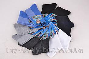 Носки детские на мальчика  (TKC123/600) | 600 пар, фото 2