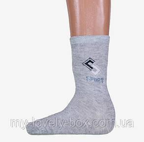 Мужские носки Sport (A259/360) | 360 пар, фото 2