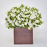 """Вазон из дерева для комнатных растений """"CUBE"""" в форме куба, новая коллекция """"Stylish INTERIOR"""""""