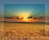 Картина на стекле с МДФ подложкой Закат в поле 50*60 см