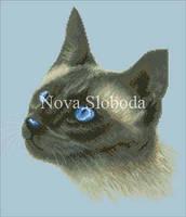 Рисунок на канве для вышивки нитками мулине ММ-2021 Сиамская кошка
