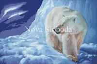 Рисунок на канве для вышивки нитками мулине ММ-3086 Белый медведь