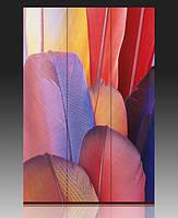 Ширма Разноцветные перья