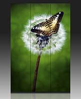 Ширма декоративная Бабочка