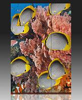Ширма Рыбы красного моря