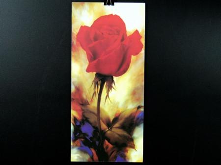 Картина Magnifique / 40х18 см / Троянди 1