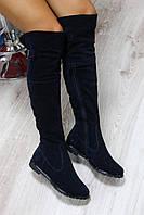 Осенние натуральные замшевые сапоги-ботфорты цвет : темно- синий