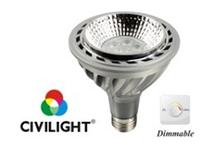 Светодиодная лампа DPAR30 WP07T20