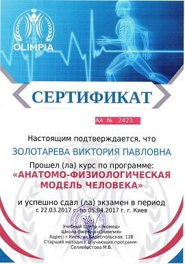 Образец сертификата о прохождении теоретического курса в школе Олимпия