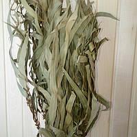 Эвкалиптовый веник для бани, фото 1