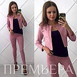 Женский стильный замшевый костюм: жакет и брюки в расцветках, фото 2