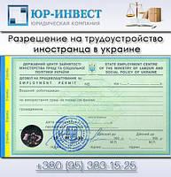 Оформление разрешения на трудоустройство иностранца | Оформление и получение зеленой карты