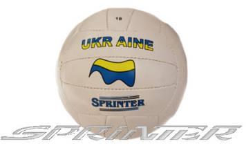 Волейбольный мяч с символикой Украины 56