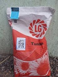 Семена подсолнечника Тунка (Lg, Limagrain) Лимагрейн