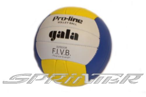 Мяч волейбольный GALA outdoor Pro-line. 05081