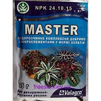 Удобрение Мастер для декоративно-лиственных растений 25 г