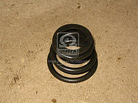 Пружина наконечника тяги рулевой МАЗ, МАЗ 5336-3003069