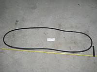 Уплотнитель стекла ветрового ГАЗ 3307 4301-5206050-02