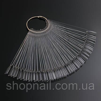 Палитра - веер на кольце прозрачная на 50 образцов, фото 2