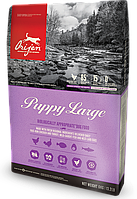 Orijen (Ориджен) Puppy Large Breed Паппи Лардж Брид корм для щенков крупных пород 11.4 кг
