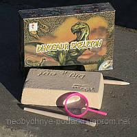 Набор для раскопок динозавра (игрушка)
