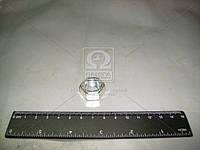 Гайка М14х1,5 серьги рессоры, амортизатора покупн. ГАЗ 250559-П29