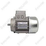 Електродвигун TS71B4 0,37 kW 1380RPM 230/400V Motovario, фото 2
