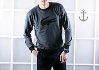 Мужской свитшот / кофта Lacoste (S, L размеры)
