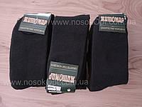 Носки мужские зимние Житомир Elit (махровые) 25 - 27 опт