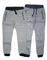 Утеплённые брюки  спортивные для мальчиков, F&D, размеры 8-16 лет, арт. YY-2991