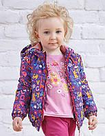 Куртка на синтепоне для девочки Котики 7006-1 (р.86,92,98)