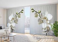 """3D Фото Шторы """"Веточка белых орхидей"""" 2,7м*2,9м (2 половинки по 1,45м), тесьма"""