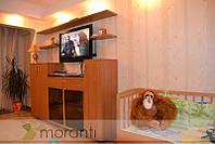 Гостиная стенка под ТВ