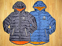 Куртки зимние на меху на мальчика оптом, Grace, 4 рр