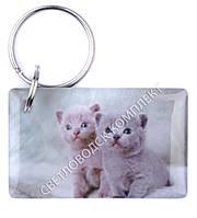 """Заготовка ключа для домофона RFID 5577, """"Котята"""", перезаписываемая"""