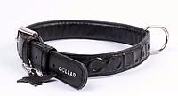 Ошейник COLLAR GLAMOUR с объемной надписью, ширина 25мм, длина 38-49см чёрный 34571