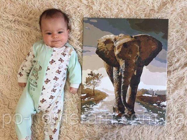 Раскраска по номерам Mariposa Королевский слон MR-Q1975