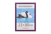 Фоторамка ,пластиковая, А4, 21х30, рамка , для фото, дипломов, сертификатов, грамот, картин, 1611-37