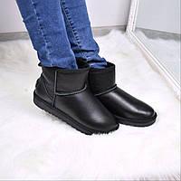 Угги женские UGG короткие кожа 3605, зимняя обувь