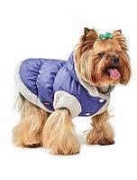 Жилет для собак Pet Fashion БОНЖУР S, Длина спины: 27-30см, обхват груди: 32-40см