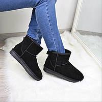 Угги женские UGG короткие ЗАМША 3610, зимняя обувь
