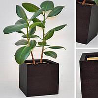 """Вазон из дерева для комнатных растений """"CUBE"""" цвет венге, новая коллекция """"Stylish INTERIOR"""""""