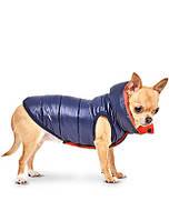 Жилет для собак Pet Fashion МАРКИЗ XS-2, Длина спины: 26-28 см, обхват груди: 32-39 см