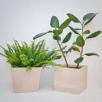 """Деревянный вазон для комнатных растений """"CUBE"""", новая коллекция """"Stylish INTERIOR"""""""